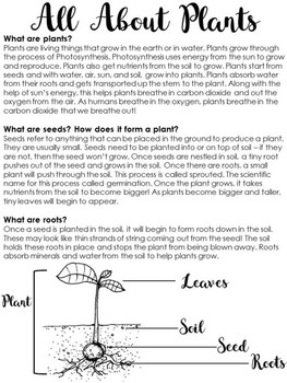 Soil and Plants Note Taking Activity includes Science Quiz - Science and Writing