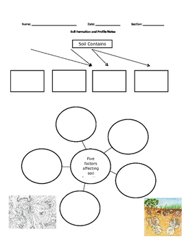 Soil and Soil Formation Graphic Organizer
