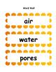 Soils Word Wall
