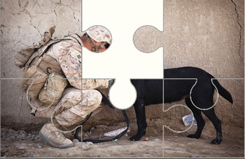 Soldier and Dog Digital Puzzle VIPKID