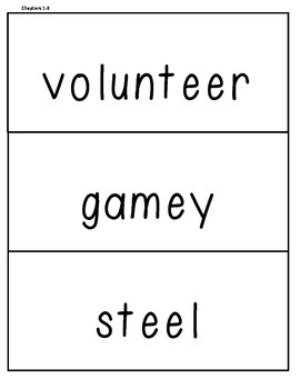 Soldier's Heart Vocabulary Words