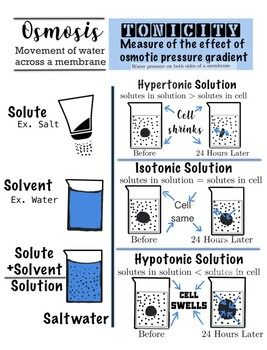 Solution and Tonicity Anchor Chart POSTER