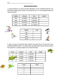 Solve Speed & Rank