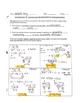 Solving Quadratic Equations Worksheet: Factoring & The Qua