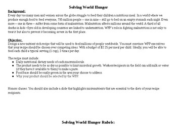 Solving World Hunger Rubric
