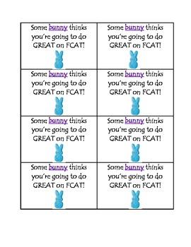 Some Bunny FCAT Encouragement