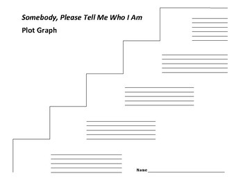 Somebody, Please Tell Me Who I Am Plot Graph - Mazer & Lerangis