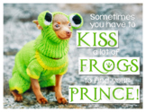 Sometimes You Have to Kiss a lot of Frogs to Find Your Pri