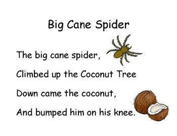 Song Chart: Big Cane Spider