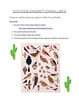 Sonora Desert Dwellers