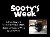 Sooty's Week - A Curious Kitten's Slideshow inspired by Cookie's Week