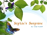 Social Story:  Sophie's Surprise- a story about moving and friendship