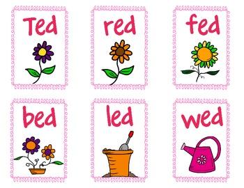 Sort CVC words - Flowers