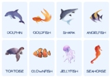 Sort Categories of Animals Sea and Land