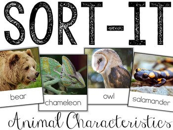 Sort-It! Animals Characteristics (Scales, Feather, or Fur)