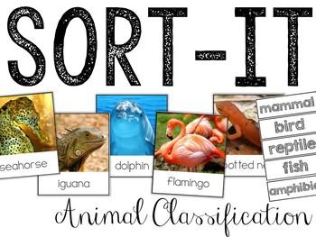 Sort-It! Animals Classification (Mammals, Birds, Reptiles, Fish, Amphibians)