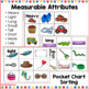 Attributes Sorting Classifying and Graphing Attributes for Kindergarten