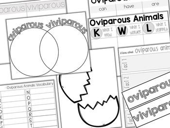 Sort-It! Oviparous Animals Sorting Cards