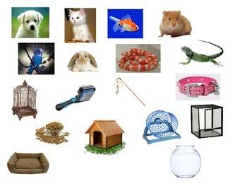 Sort Pet and Pet Supplies