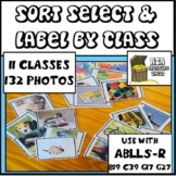 Sort Select Label by Class Category, ABLLS-R B19, C39, G17