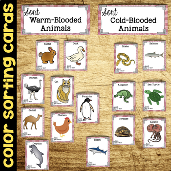 Sort Warm-Blooded and Cold-Blooded Animals - Inheritance and Variation of Traits