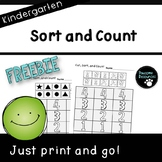 Sort and Count Student Pages (***FREEBIE***Kindergarten-K.MD.3)