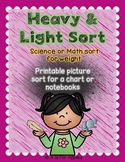 Sort by Weight: Heavy or Light {FREEBIE}