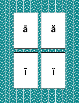 Short/Long Vowel a/i Contrast Sort it, Spell it, Use it