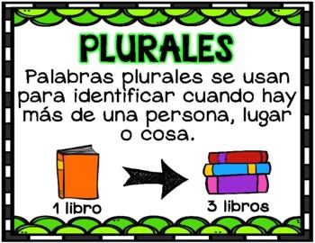 Sorteo de plurales (Plurals Sort)