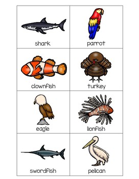 Sorting Activities Animal Group Bird and Fish Part 1