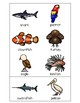 Sorting Activities Animal Group Bird and Fish Part 1