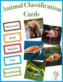 Sorting Activity: Animal Classification (Mammal, Bird, Reptile, Amphibian, Fish)