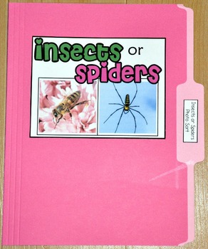"Sorting Activity: ""Insects or Spiders Sort File Folder Game"""