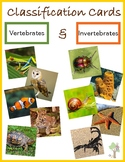 Sorting Activity - Vertebrate and Invertebrate Animals wit