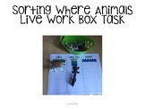 Sorting Animal Mats Work Box FREEBIE