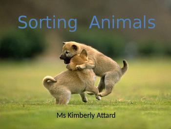 Sorting Animals - Vertebrates and Invertebrates