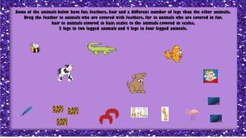 Sorting Animals by Appearance