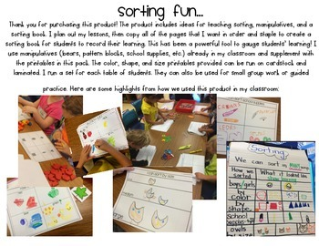Sorting Fun  -- ideas and supplies to teach sorting by attribute