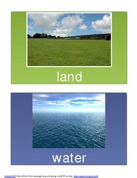 Sorting: Land vs. Sea Animals