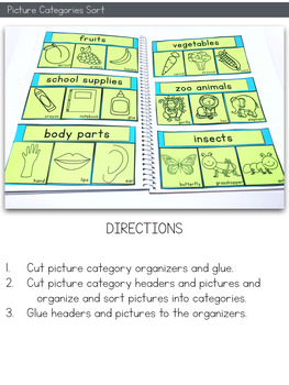 Sorting Objects Into Categories Interactive Notebook