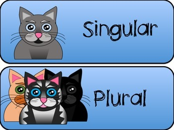 Sorting Singular Nouns and Irregular Plural Nouns with Cats