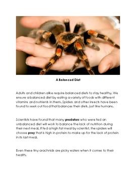 Sorting Spiders - Arachnid Unit - Great Sub Plan