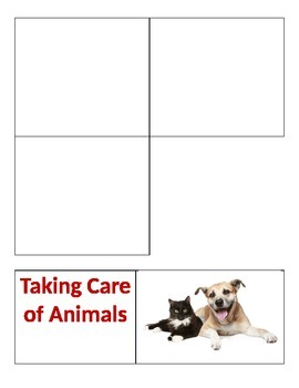 Sorting - Taking care of pets vs. plants