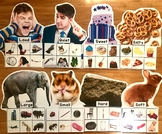 Sorting With My Senses Sorting Mats (w/Real Photos)