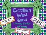 Sorting Words by Categories- Literacy Station