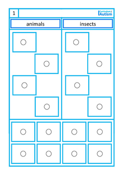 Sorting and Classifying Common Nouns Autism Special Education ESL