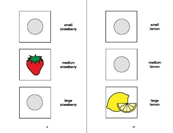 Sorting by SIZE Adapted Velcro Book, SPEECH THERAPY, Autism, Concepts