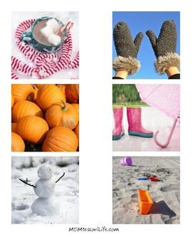 Sorting by Seasons Cards