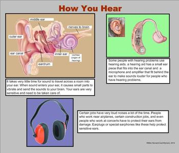 Sound - A Third Grade PowerPoint Introduction