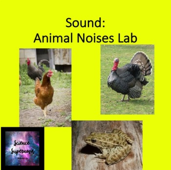 Sound: Animal Noises Lab